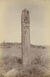 Carved pillar in an open field at Tunka, Jhansi District